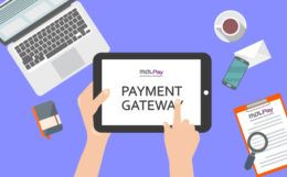 Important Elements in Payment Gateway
